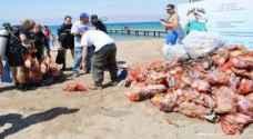 7 آلاف طن نفايات ألقيت في شواطئ العقبة العام الماضي