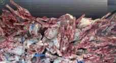 مسالخ أمانة عمان تعاين 353 طن من اللحوم وتتلف 5 منها خلال العيد