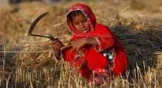 تضامن: 8868 طفلة عاملة في الأردن