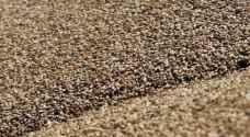 وزير التموين المصري يقول احتياطيات مصر من القمح تكفي لستة أشهر