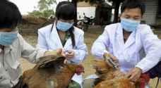إنفلونزا الطيور تتفشى في ثالث أكبر مدن الصين