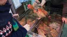 لماذا تنتشر إنفلونزا الطيور أكثر في الصين؟