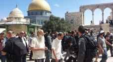 ٣١٥٦ مستوطنًا اقتحموا المسجد الأقصى في آيار