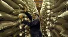 الأردن يطرح مناقصة لشراء ١٠٠ ألف طن من القمح