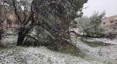 بالفيديو والصور.. بدء تساقط الثلوج بعجلون
