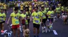 كلاب تتسابق في الفلبين من أجل جمع تبرعات خيرية