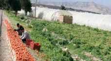 نظام معدل لتطوير مهارات العاملين في الزراعة بالأردن