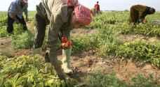 مناظرة حول السياسات الحكومية في دعم قطاع الزراعة