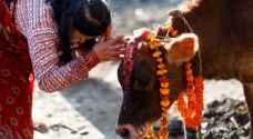 الهند.. ضرب مسلم حتى الموت بتهمة ذبح بقرة