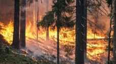 فرق الإطفاء الإسبانية تسيطر على حريق أتى على 3200 هكتار