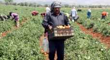رغم سنوات الحرب.. الأسد يعفى المزارعين السوريين من فوائد القروض وغرامات التأخير