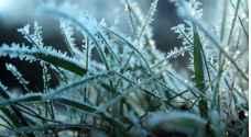 السبت .. استقرار على الأجواء مع بقائها باردة وتشكل للصقيع ليلاً في العديد من المناطق - فيديو