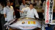 لماذا بيعت سمكة تونة بـ3 ملايين دولار في اليابان ؟