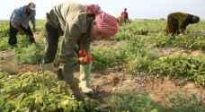 """""""الزراعة"""": المنتجات الزراعية الأردنية تتعرض لهجمات """"ممنهجة"""""""
