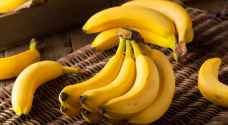 كيلو الموز البلدي 70 قرشا في السوق المركزي