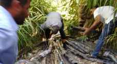 ضبط أكثر من 25 اعتداء على مصادر المياه في الاغوار الشمالية - صور