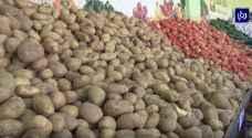 """""""المهندسين الزراعيين"""" تطمئن الأردنيين حول سلامة للبطاطا"""