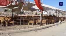 تراجع الإقبال على الأسواق قبيل العيد وتحسن في سوق الأضاحي - فيديو