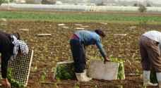 هام للعمالة الوافدة في الأردن .. تفاصيل