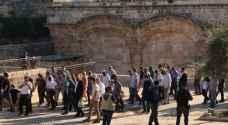 """مئات المستوطنين يقتحمون الاقصى في """"عيد الغفران"""""""