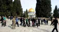 دعوات لشد الرحال للمسجد الأقصى