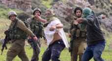 مستوطنون يهاجمون قاطفي الزيتون في بورين جنوب نابلس