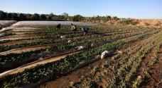 عدوان الاحتلال على قطاع غزة يكبد القطاع الزراعي خسائر كبيرة