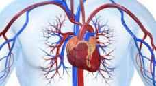 تقنية جديدة لفحص شرايين وعضلة القلب بدقة عالية -فيديو