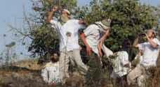 مستوطنون يجرفون أراض في بورين ودهس 3 فلسطينيين قرب قلقيلية
