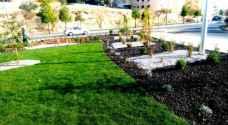 الأمانة: 143 حديقة في عمّان وزرعنا 25 ألف شجرة في 2019
