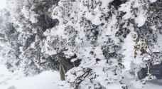 تعرّف على ارتفاعات المناطق الأردنية التي قد تشهد تساقطاً للثلوج