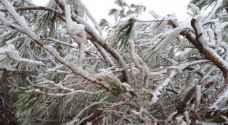 طقس العرب: موجة قوية من الجليد مع ساعات مساء وليلة الجمعة/ السبت