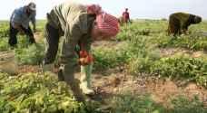 قرض بـ 10 ملايين دينار دعما للمزارعين