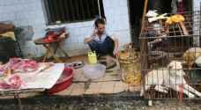 الصين تحظر على مواطنيها أكل القطط والكلاب رسميا