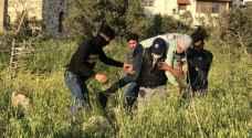 إصابات واختناقات بمواجهات بين الاحتلال وأهالي كفر قدوم