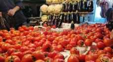 وزير الصناعة يحدد سقف أسعار البندورة والباذنجان