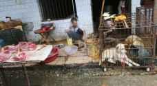 بكين تحظر تناول الحيوانات البرية