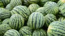 """""""الزراعة"""" توضح حقيقة فيديو يتحدث عن هرمونات في البطيخ"""