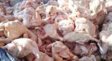 وزارة الزراعة تنفي استيراد الأردن دواجن فاسدة من أوكرانيا