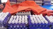 اتلاف 1,5 طن بيض فاسد في الرمثا.. صور