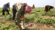 """الزراعة لـ """"رؤيا"""": جاهزون لأي سيناريو لضمان توريد الغذاء للأسواق الأردنية.. فيديو"""