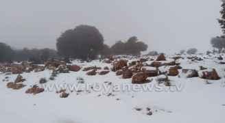الثلوج في محافظة عجلون صباح الخميس