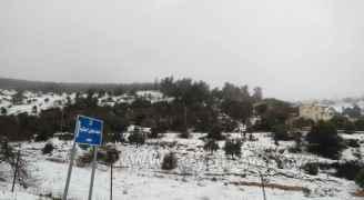 الثلوج في محافظة جرش صباح الخميس