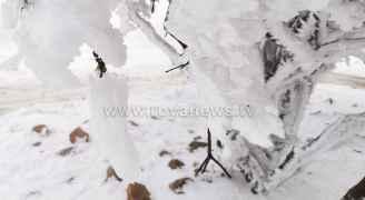 الثلوج ترسم لوحات فنية رائعة في منطقة الهيشة جنوبي الأردن
