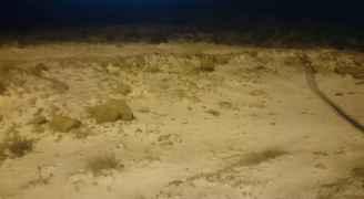 بالفيديو والصور .. تساقط كثيف للثلوج بمحافظة الكرك
