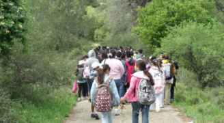 وزارة التربية تقرر وقف جميع الرحلات المدرسية في المملكة حتى إشعار آخر