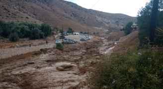 الدفاع المدني: إنقاذ شخصين بمنطقة وادي الهيدان في مادبا