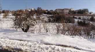 طقس العرب: تأثير المنخفض الجوي على العاصمة بعد ساعات .. وتوقعات بتراكم الثلوج- فيديو
