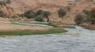 منع المتنزهين من التوجه إلى وادي الحوارات بدير علا