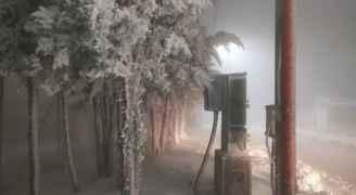 تساقطات ثلجية وتراكمات في لواء البتراء والطيبة في جنوب الأردن.. فيديو